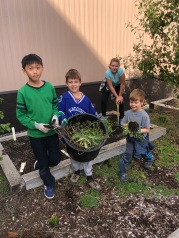 Garden Helpers